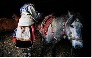 【尼汝图片】中甸——尼汝,转山跑马节
