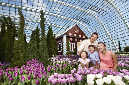新加坡滨海湾花园双馆门票花穹和云雾林 可选空中走廊