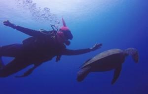 【美娜多图片】潜水员考牌攻略(台湾OW +美娜多AOW),解答潜水N多问