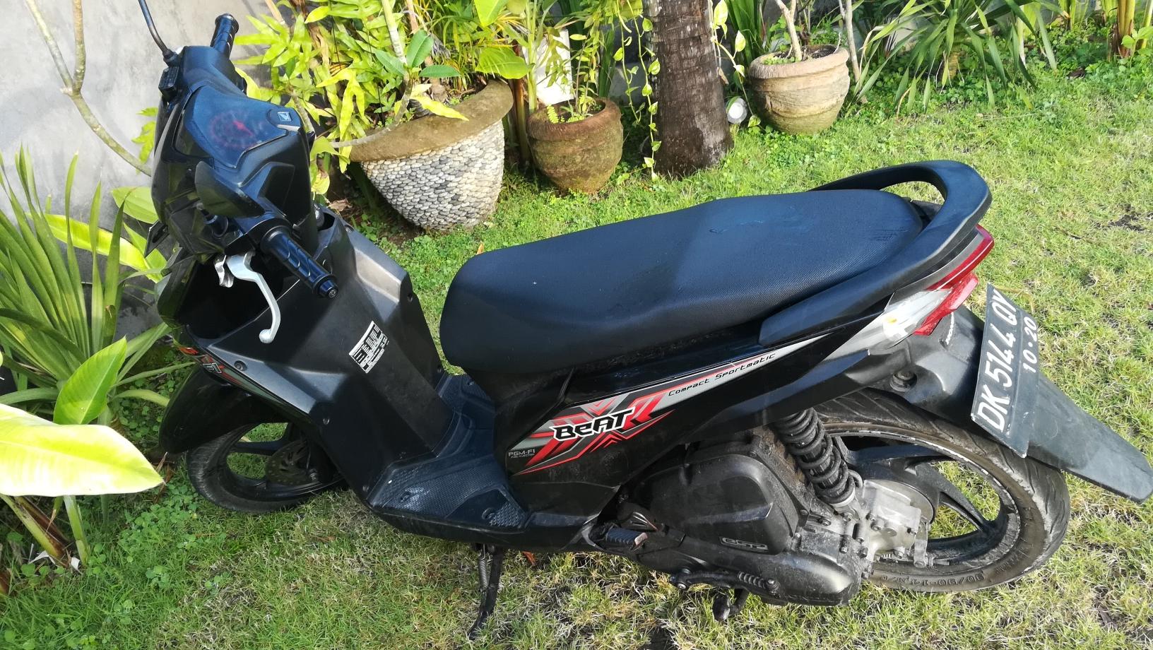骑行在巴厘岛,这些注意事项你不得不知道