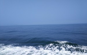 【龙口图片】山东半岛周边岛屿探秘,大家熟知的岛闪过,新鲜便宜海鲜好去处