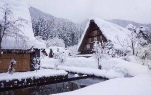 【白川乡图片】冬天就是要在雪地里打滚-名古屋|高山|白川乡