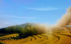 【连山壮族瑶族自治县图片】欧家梯田闻稻花香,千年瑶寨千年等一回。