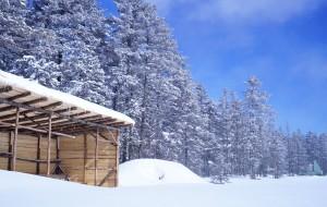 【敦化图片】美丽的白色童话世界老里克湖,长白山,哈尔滨自由行
