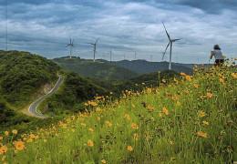 """5月13号去""""香格里拉""""雁村,拍摄白岩山最美风车路"""