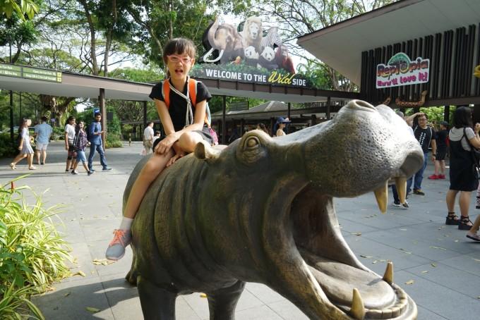 27)新加坡动物园&滨海湾花园