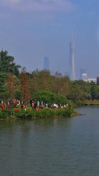 海珠湖公园位于广州市海珠区城市新中轴的南段,公园面积2248.