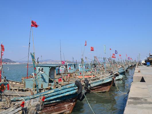 醉美崂山 青岛崂山仰口景区 八大关 栈桥一日游 含特色渔家宴午餐