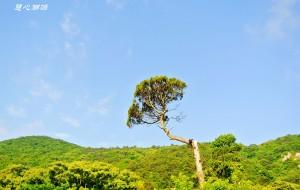 【普陀山图片】四大佛山主题游:普陀山法雨寺、问题犀利、形势严峻