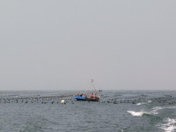 信步绿江村~瓜皮岛
