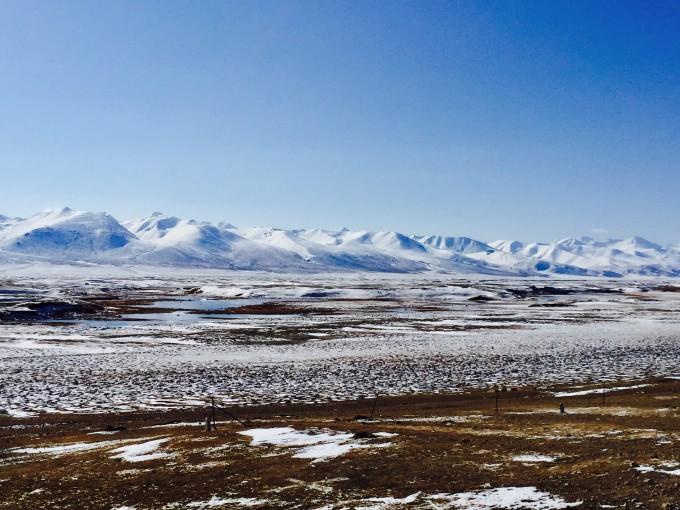 一位蒙古族牧民骑在马上,在羊群后面左驱右赶,就如同一位威武的武士在
