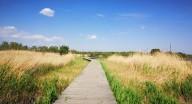 国内春季骑行路线,国内春季4条骑行路线推荐