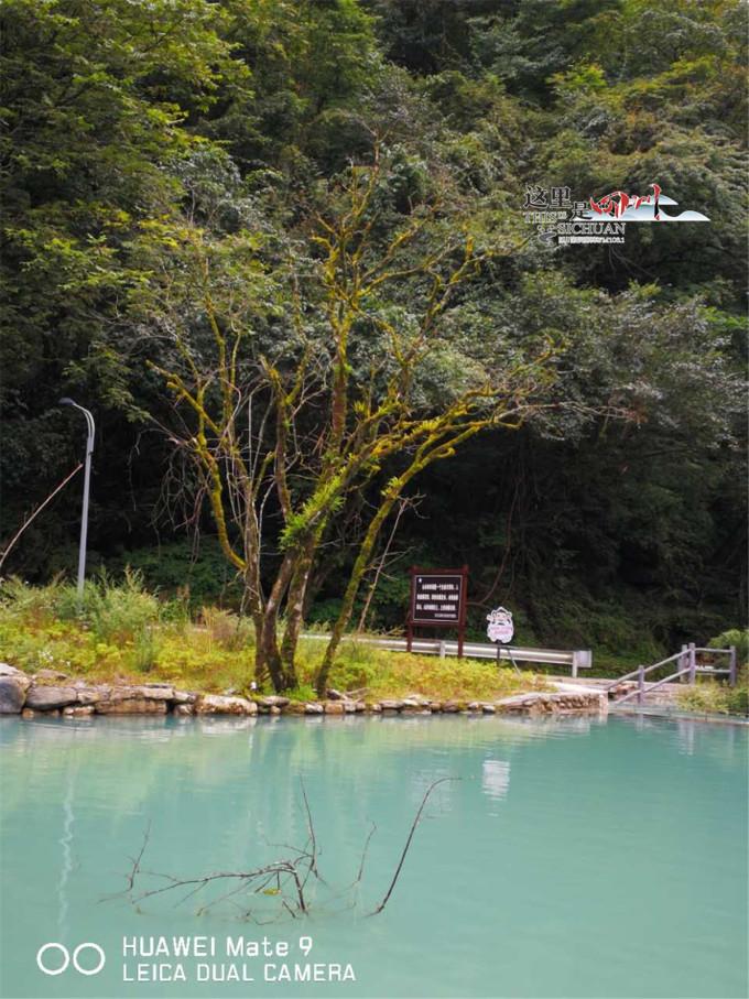 县境内。喇叭河是省级自然保护区,始建于1963年,总面积234.34平。 喇叭河是野生珍稀动植物天然基因库,保护区内生态环境良好,植被分布带谱完整,动植物种属丰富,珍稀保护品种众多,已知区内有维管束植物68科380属1500余种,有珙桐、水青树、连香树等国家一、二、三类珍稀保护植物18种左右。 所以,喇叭河最好耍的还是在于野趣