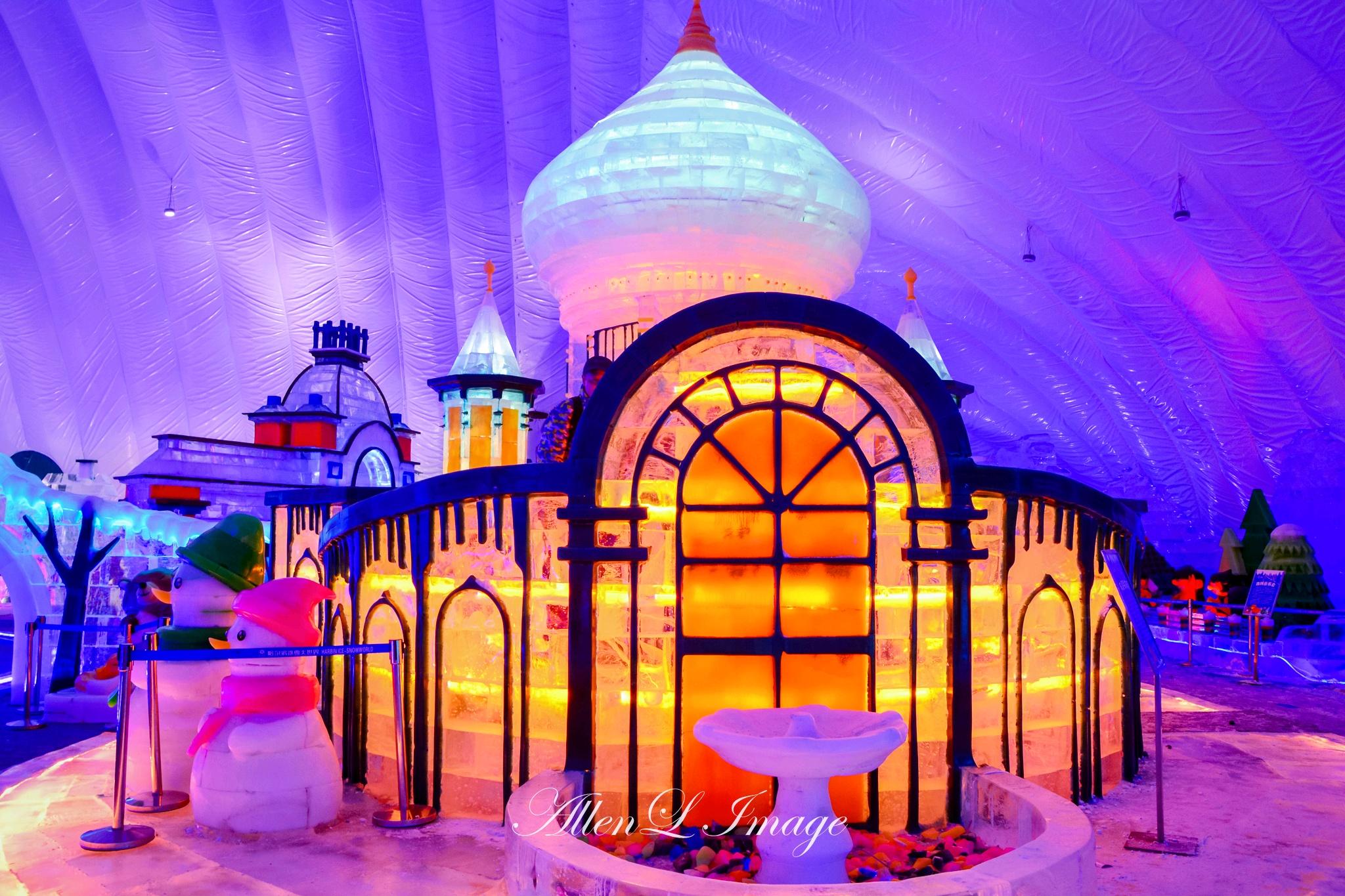 哈尔滨有哪些室内的好玩的地方图片图片