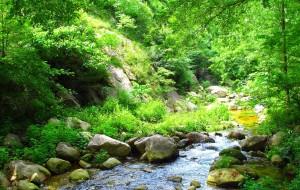 【鲁山图片】鲁山天河--千言河休闲游