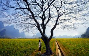 【英德图片】英西峰林丨自驾-徒步-骑车全方位探路