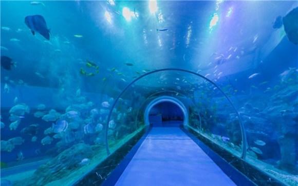 威海神游海洋世界景区电子票(含5d动感影院)