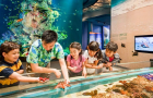 新加坡S.E.A.海洋馆(可选含海事博物馆+台风剧场套票)