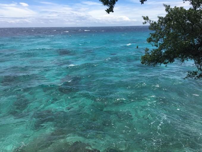 """""""菲你莫属,甜蜜回忆""""—菲律宾长滩,杜马,鲸鲨,苏米龙"""
