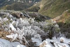冰雪奇缘-赏连州金子山最美冰挂