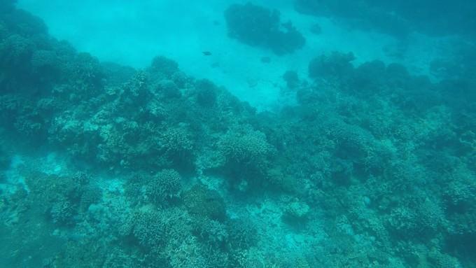 醉美西沙群岛航拍视角-游泳浮潜海上日出日落