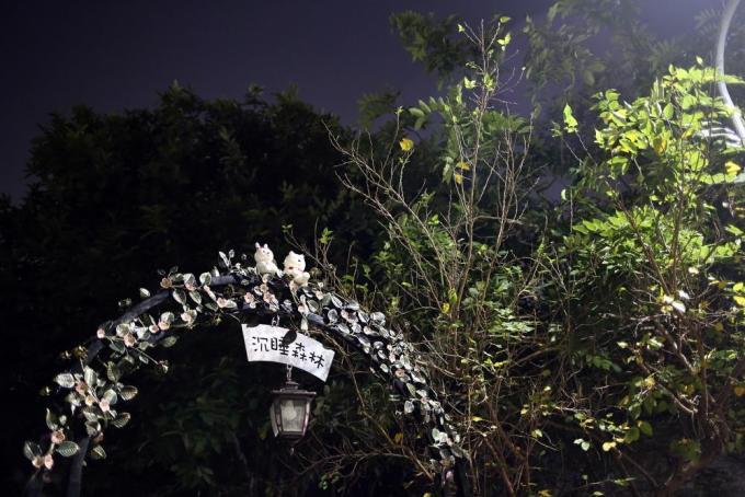 【台湾旅游景点全攻略】一起手牵手「趣」嘉义/沉睡森林+玉山旅社咖啡图片