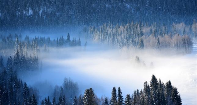 冬天的北疆,最美!