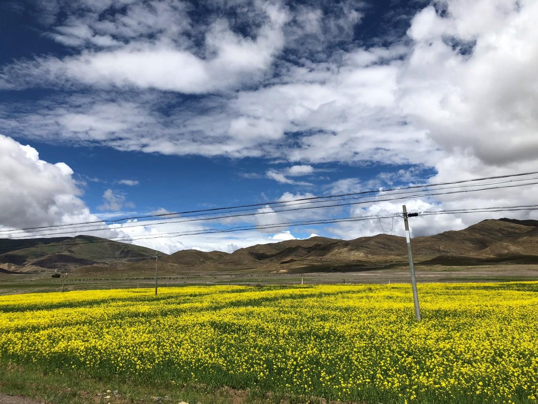 西藏--阿里,與您相伴的時光 41