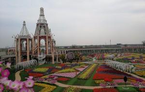 【上海图片】魔都的公园、商城美拍之地(更新)