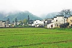 四月婺源思溪延村:一座充满诗意的古村落