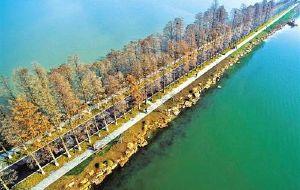武汉娱乐-东湖绿道