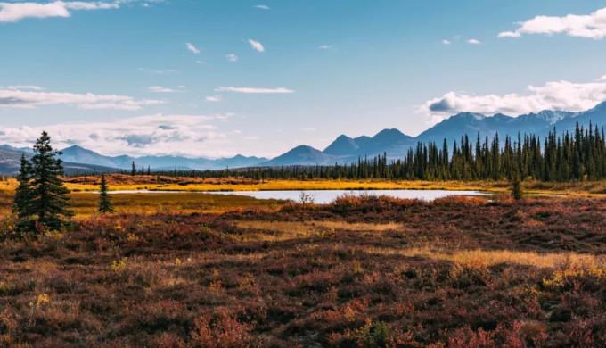 阿拉斯加位于北极圈附近,被雪山,冰川,原始森林,动物等占据了几乎