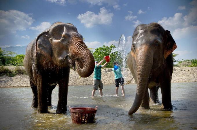 什么是旅行中最舒服的方法?你一定会在泰国的spa当中找到答案,旅行时为心灵减压的一种最好方式,而spa与旅行有着异曲同工之妙,舒缓的音乐,迷人的香气,温柔的触摸,这一切都能为我们的身体和心灵带来前所未有的释放。绿洲水疗中心(The Oasis Spa)属于泰国顶级水疗中心之一,专注于泰式按摩和精油按摩,获得众多按摩及水疗方面的大奖。 这是一场由两位理疗师同时带来的奇妙按摩体验,一位带您体验东方足部按摩,紧接着便是四手按摩绿洲特色之选按摩之一,这种双人按摩能让您彻底放松身体,调理体内外机能。按摩结束后,您