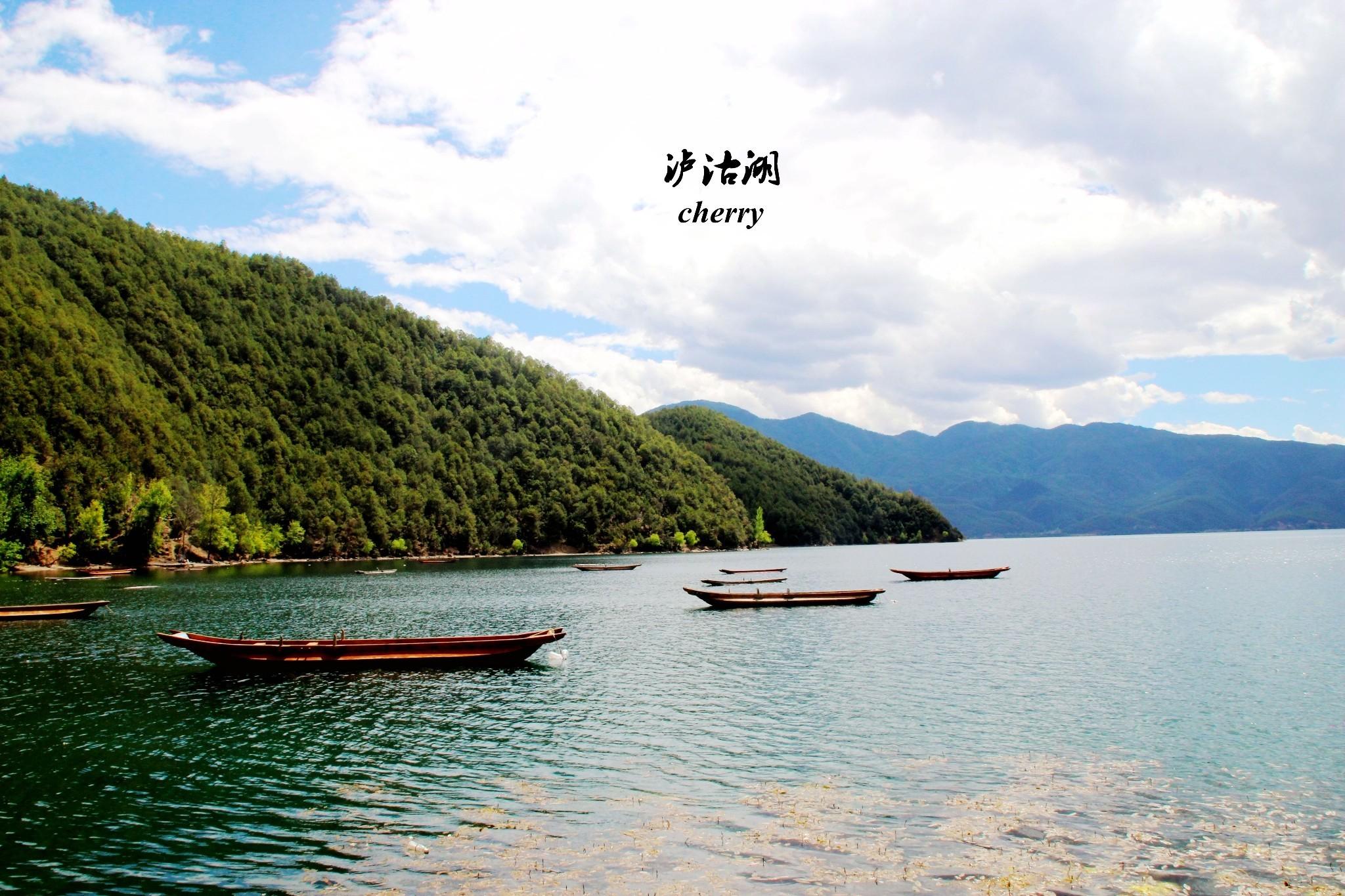 放空自己,三人行。(香格里拉——丽江——泸沽湖——黄山——上海) 艳遇·丽江,走婚·泸沽湖,猎艳·香格里拉,彩云之南的两个疯子般的女银