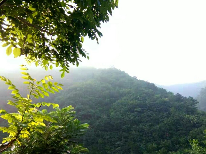 登顶六指山,探得三界碑 ――再游蓟州前干涧
