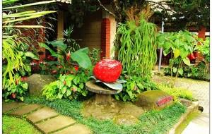 印度尼西亚美食-草莓小站