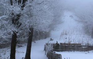 【安吉图片】我的首篇游记--浙江安吉龙王山徒步之行