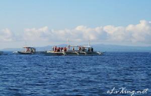 菲律宾娱乐-Pamilacan Island Dolphin Watching