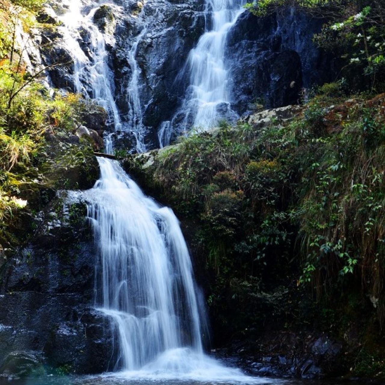 旗山国家森林公园
