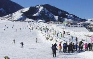新疆娱乐-阳光滑雪场