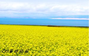 【茶卡盐湖图片】青海湖~敦煌之西行记