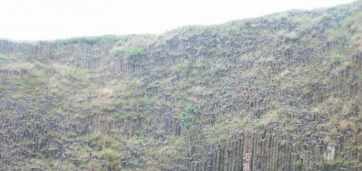 桂子山石柱林