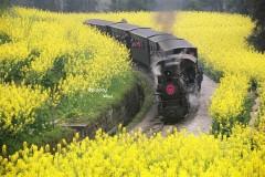探索工业时代的遗迹——乐山犍为,嘉阳小火车