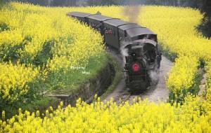 【犍为图片】探索工业时代的遗迹——乐山犍为,嘉阳小火车