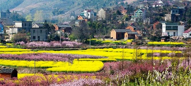 濮塘风景区,位于马鞍山市郊,面积约20平方公里,竹海,古树,清泉,钟鼓被