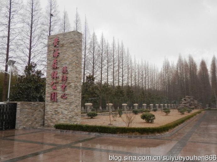 黄海森林公园