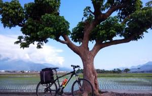 【池上图片】【两个人,一个岛】之台湾环岛骑行篇