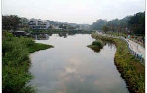 【桃园图片】紧走慢走阅台湾(39)——慈湖
