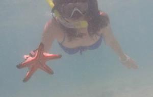 【科隆岛图片】梦幻童话海底世界--菲律宾巴拉望科隆之旅