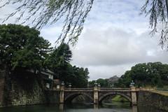 日本游之----二重桥、浅草寺、仲见世街、金阁寺、大阪城公园